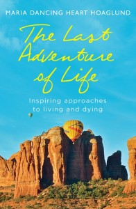The Last Adventure of Life cover (523x800)